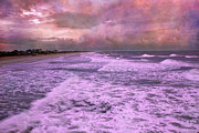 Thinking Posters - Purple Majesty  Poster by East Coast Barrier Islands Betsy A Cutler