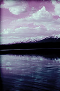 Montana Digital Art - Purple Mountain Majesty by Janie Johnson