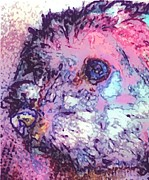 Puppies Digital Art Metal Prints - Purple Pooch Metal Print by Tina  Vaughn