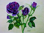 Roses Drawings - Purple roses by Zulfiya Stromberg