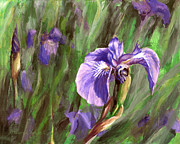 Karen Whitworth - Purple Royalty Wild Iris
