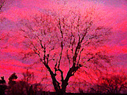 Pam Clark - Purple Sky Tree