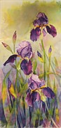 Ann Hoffpauir - Purple Splendor