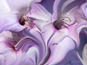 Gladiola Posters - Purple Swirl Abstract Gladiolas  Poster by Jennie Marie Schell