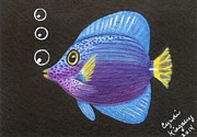 Cyndi Kingsley - Purple Tang Fish
