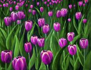 Purple Tulip Field Print by Anastasiya Malakhova