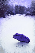 Polka Dot Prints - Purple Umbrella Print by Christopher and Amanda Elwell
