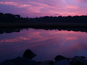 East Coast Rocks Posters - Purple Weekapaug Sunrise over Pond -  Rhode Island Poster by Anna Lisa Yoder