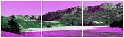 Panorama Mountain Images Prints - Purple Winter Triptych Print by Barbara Griffin
