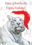 White Tiger Mixed Media - Purrfect Holiday by Lizi Beard-Ward