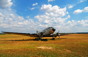 Dc-3 Plane Prints - Put Out to Pasture Print by Mountain Dreams