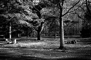 Garden Plow Photos - Put Your Hand To The Plow - Black and White by Frank J  Casella