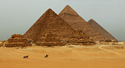 Pyramids Framed Prints - Pyramids at Giza Framed Print by Bob Christopher