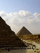 Pharaoh Prints - Pyramids Of Giza 23 Print by Antony McAulay