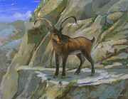 ACE Coinage painting by Michael Rothman - Pyrennean Ibex