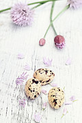 Fresh And Healthy Prints - Quail Eggs and Fresh Chives Print by Stephanie Frey