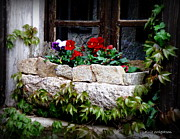 France Doors Posters - Quaint Stone Planter Poster by Lainie Wrightson