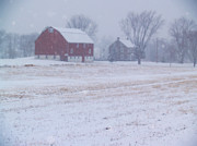 Winter Scenes Rural Scenes Prints - Quakertown Farm on Snowy Day Print by Anna Lisa Yoder