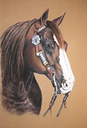 Quarter Horse Drawings Framed Prints - Quarter Horse Framed Print by Barbara Lightner