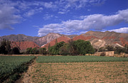 Plowed Fields Posters - Quebrada de Humahuaca Poster by James Brunker