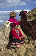 Peruvian Llama Prints - Quechua Grandmother And Granddaughter - Peru Print by Craig Lovell