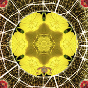 Yellow Chakra Posters - Queen Bee-Nectar of Life Poster by Alicia Kent
