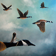 Flock Of Birds Painting Metal Prints - Queen Of The Canada Geese by Shawna Erback Metal Print by Shawna Erback
