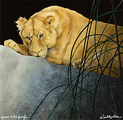 Lioness Painting Prints - Queen of the Jungle... Print by Will Bullas
