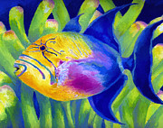 Triggerfish Painting Posters - Queen Triggerfish Poster by Stephen Anderson
