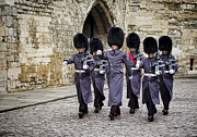Changing Of The Guard Framed Prints - Queens Guard Framed Print by Heather Applegate
