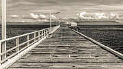 Perry Webster - Queensland Pier