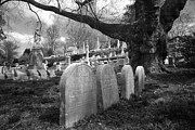 Scary Prints - Quiet Cemetery Print by Jennifer Lyon