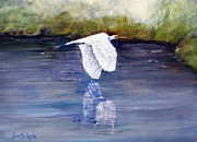 Wildlife Landscape Drawings - Quiet Flight by Loretta Luglio