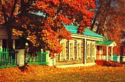 Jenny Rainbow - Quiet Setting among the Fall Beauty
