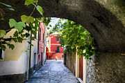 Grapevine Framed Prints - Quiet Street in Monterosso Framed Print by George Oze