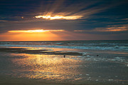 Folly Beach Posters - Quiet Sunrise in Folly Beach Poster by Iris Greenwell