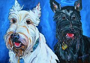Scottie Painting Posters - Quincy And Kramer Poster by Patti Schermerhorn