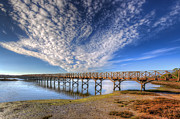 Nigel Hamer Metal Prints - Quinta do Lago Wooden Bridge Metal Print by Nigel Hamer