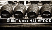 Wine Galleries Prints - Quinta dos Malvedos Print by John Rizzuto