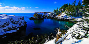 Photo Manipulation Photo Posters - Quoddy Head Snow Poster by ABeautifulSky  Photography