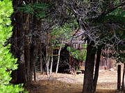 Logging Camp Prints - R-Ranch Shack Print by Vicki Buckler