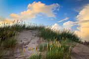 Skagen Framed Prints - Raabjerg Dune Framed Print by Inge Johnsson