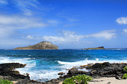Leslie Kirk Photo Framed Prints - Rabbit Manana Island Oahu Hawaii Framed Print by Leslie Kirk
