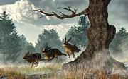 Daniel Eskridge - Rabbit Race