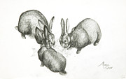 Farmyard Animals Posters - Rabbits Poster by Jeanne Maze