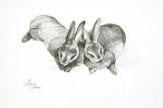 Farmyard Painting Posters - Rabbits Sleeping Poster by Jeanne Maze