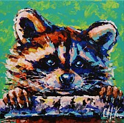 Christine Karron Metal Prints - Raccoon Metal Print by Christine Karron
