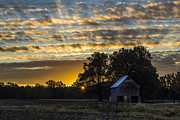 Western Ky Prints - Radiating Sunrise Print by Amber Kresge