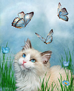 Kitty Mixed Media Posters - Ragdoll Kitty And Butterflies Poster by Carol Cavalaris