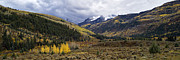 Gunnison Prints - Raggeds Wilderness Autumn - D003219 Print by Daniel Dempster